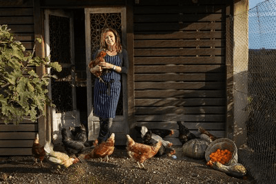 HOW THE HUMBLE BACKYARD CHOOK IS SUDDENLY IN HUGE DEMAND