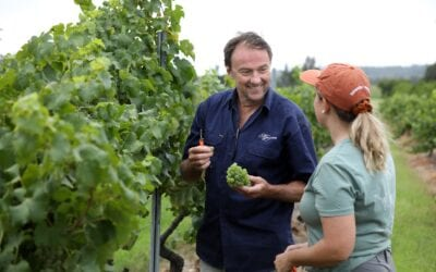 Hunter wine country has enjoyed the rub of the weather gods and the proof is in the vintage